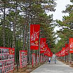 Alley of the Immortal Regiment