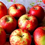Apples still lifes_1