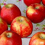 Apples still lifes_2