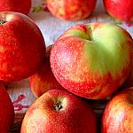Apples still lifes_3