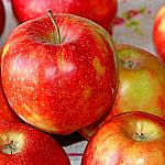 Apples still lifes_4