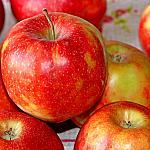 Apples still lifes_4