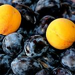 Plums and peaches_2