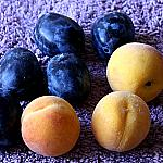 Plums and peaches_3