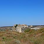 Ruins and herbs