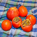 Still lifes with persimmon_2