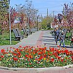 Tulips and children
