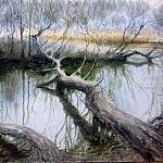 Плавневый лес Хортицы